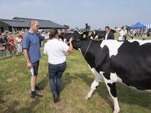 Frau zeigt dem Jurymitglied auf Milchviehshow prize Kuh in hol Lizenzfreie Stockbilder