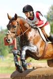 Frau zu Pferde auf dem Springen des roten Kastaniepferds Lizenzfreie Stockbilder
