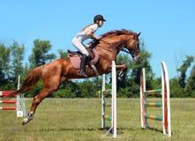 Frau zu Pferde auf dem Springen des roten Kastaniepferds Stockbild