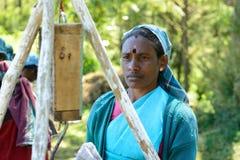 Frau, zum des Tees weg auf Teeplantagen zu sammeln Lizenzfreie Stockfotos