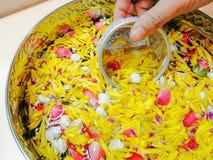 Frauen übergeben das Halten einer kleinen Wasserschüssel und das Zeichnen des Wassers in einer großen Schüssel Wasser, Songkr lizenzfreies stockbild