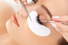 Frauen-Auge mit den langen Wimpern. Wimper-Erweiterung Stockbilder