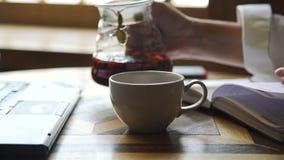 Frauen-auslaufender Tee bei der Herstellung von Anmerkungen in einem Tagebuch stock footage