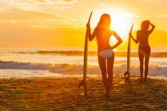 Frauen-Bikini-Surfer u. Surfbrett-Sonnenuntergang-Strand lizenzfreies stockbild