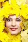 Frauen in den gelben Herbstblättern. lizenzfreies stockfoto