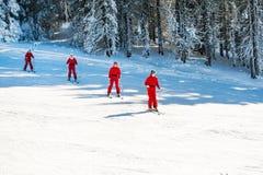 Frauen in den vibrierenden roten Jacken Ski fahrend an der Steigung Stockfoto