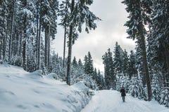 Frauen, die in den Wald in der Winterzeit umfasst mit weißem Schnee und tragender dunkler Kleidung gehen lizenzfreies stockbild