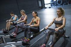 Frauen, die in der Turnhalle rudern und in Eignung crossfit Raum ausbilden lizenzfreie stockfotos