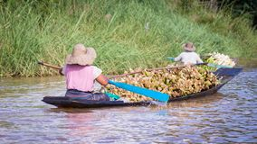 Frauen, die einen Einbaum im Inle See, Myanmar rudern lizenzfreie stockfotos