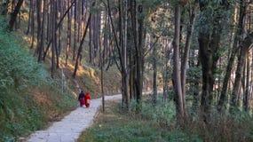 Frauen, die einen Morgenspaziergang spazierengehen stockfoto