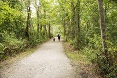 Frauen, die im Wald mit Hund laufen lizenzfreie stockbilder