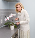 Frauen, die Lebensmittel an der Küche kochen Stockbilder