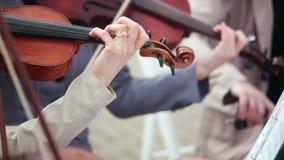 Frauen, die Saiteninstrumente Violine, Cello spielen stock footage