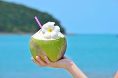 Frauen, die tropische grüne Kokosnuss halten Stockfotos