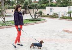 Frauen, die um Stadt mit Dachshundhund gehen Stockbilder