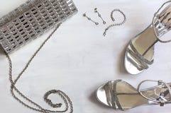 Frauen eingestellt von den Mode-Accessoires in der silbernen Farbe Lizenzfreies Stockfoto