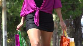 Frauen-Einkaufen, Verbraucher stock video footage