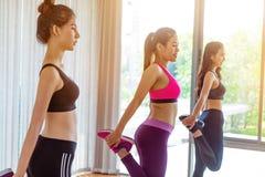 Frauen gruppieren aerobes im Eignungssportunterricht Stockbild