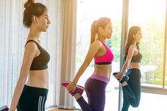 Frauen gruppieren aerobes im Eignungssportunterricht Lizenzfreie Stockfotografie