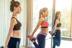 Frauen gruppieren aerobes im Eignungssportunterricht Stockbilder