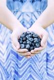Frauen-Hände, die Blaubeeren anbieten Stockfotos
