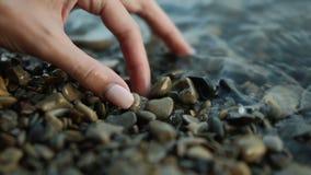 Frauen-Hand nimmt ein Meer Shell stock video