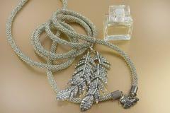 Frauen jewellry Lizenzfreies Stockfoto