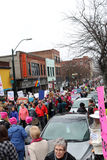 Frauen März Ashevilles NC Stockbilder