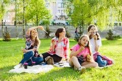 Frauen mit Kindern bei dem Sonnenuntergang, der im Park, Picknick, Seifenblasen stillsteht lizenzfreie stockbilder