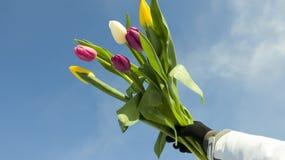 Frauen ` s Feiertag am 8. März lizenzfreies stockbild