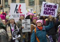 Frauen ` s März auf Washington Stockbilder