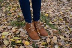 Frauen ` s Schuhe auf dem Hintergrund des Grases und des Herbstlaubs Lizenzfreie Stockbilder
