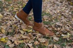 Frauen ` s Schuhe auf dem Hintergrund des Grases und des Herbstlaubs Stockfoto