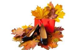 Frauen ` s Schuhe und Einkaufstasche auf buntem Herbstlaub Stockfoto