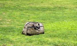 Frauen ` s Tasche auf dem grünen Gras Lizenzfreie Stockfotografie