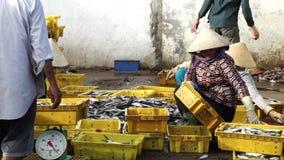 Frauen sortieren frische Fische am traditionellen Fischerdorf stock video footage