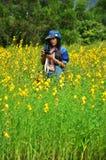 Frauen-thailändisches Porträt auf Crotalaria juncea Feld an der Landschaft Nakornratchasrima Stockfotografie