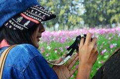 Frauen-thailändisches Porträt auf Kosmos-Blumen-Feld an der Landschaft Nakornratchasrima Thailand Stockfotos