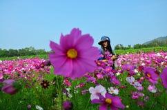 Frauen-thailändisches Porträt auf Kosmos-Blumen-Feld an der Landschaft Nakornratchasrima Thailand Stockbild