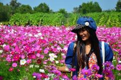 Frauen-thailändisches Porträt auf Kosmos-Blumen-Feld an der Landschaft Nakornratchasrima Thailand Lizenzfreies Stockfoto