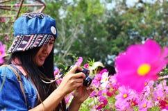 Frauen-thailändisches Porträt auf Kosmos-Blumen-Feld an der Landschaft Nakornratchasrima Thailand Lizenzfreie Stockbilder