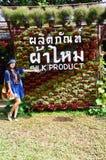 Frauen-thailändisches Porträt auf Kosmos-Blumen-Feld an der Landschaft Nakornratchasrima Thailand Lizenzfreies Stockbild