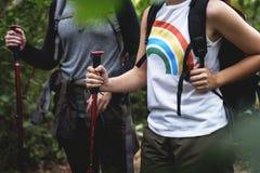 Frauen-Trekking in einem Wald stockfotografie