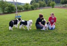 Frauen und Hunde. stockbild