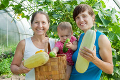 Frauen und Schätzchen mit geerntetem Gemüse Stockfotos