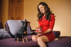 Frauen- und Spielzeugterrier mit Hund backen auf Sofa zusammen Lizenzfreie Stockfotos