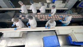 Frauen verpacken Nahrung in die Behälter und nehmen sie vom Fabrikförderer stock video