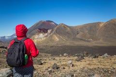 Frauen-Wanderer mit Rucksack Ansicht genießend Lizenzfreie Stockbilder