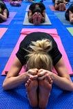 Frauen am Yoga klassifizieren das Verbiegen vorwärts auf ihre Yogamatten stockfotografie