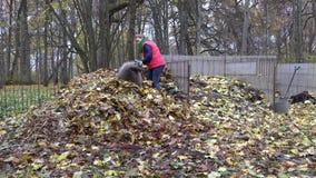 Frauenarbeit im Hinterhof Trocknen Sie Blattkompoststapel im Herbst 4K stock video